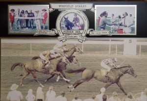 Winfield Stakes