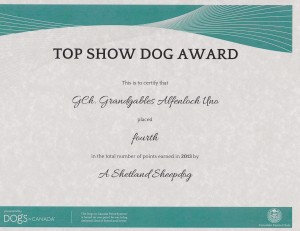 Uno Top Show Dog Award